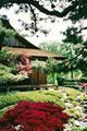 Shofuso Japanese House and Garden