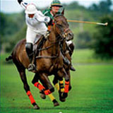 Brandywine Polo Club Season Opener