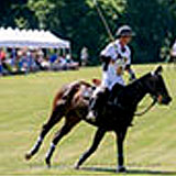 Annual Chester County Hospital Polo Cup