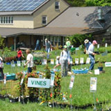 Delaware Nature Society's Native Plant Sale