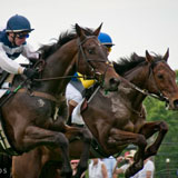 Winterthur Point-To-Point Steeplechase Races